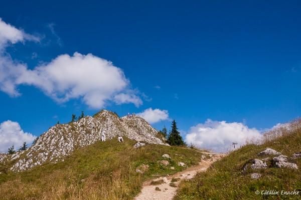 Varful Postavarul - 1799m altitudine