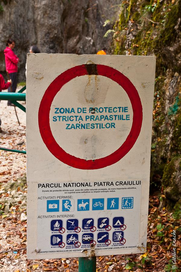 Prapastiile Zarnestilor – Parcul National Piatra Craiului | Fotografie de natura | Catalin Enache