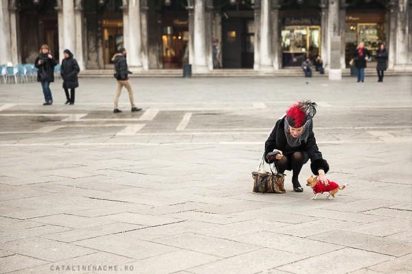 Carnavalul de la Venetia (I) | Fotograf Catalin Enache